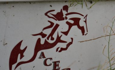 Journée Nationale du Cheval