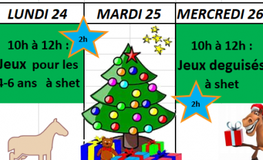 Planning des stages de NOEL